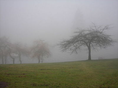 1280px-Burnaby_mountain_fog