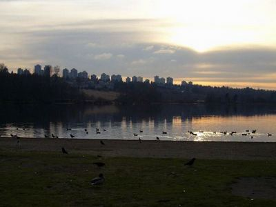 Deer_Lake_Skyline